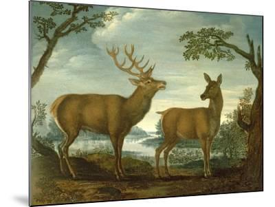 Stag and Hind in a Wooded Landscape--Mounted Giclee Print