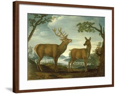 Stag and Hind in a Wooded Landscape--Framed Giclee Print