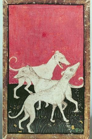 Three Hunting Dogs, One of a Set of Playing Cards, Courtly Hawking, Upper Rhein Are, c.1440-45-Konrad Witz-Stretched Canvas Print