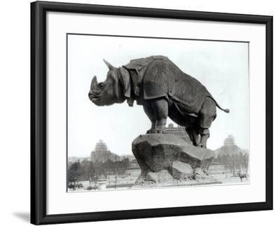 Rhinoceros, 1878, by Alfred Jacquemart-Adolphe Giraudon-Framed Photographic Print