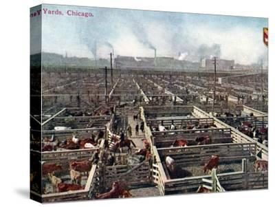 Postcard Depicting the Stock Yards and Abattoirs in Chicago, c.1910--Stretched Canvas Print