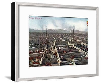 Postcard Depicting the Stock Yards and Abattoirs in Chicago, c.1910--Framed Photographic Print