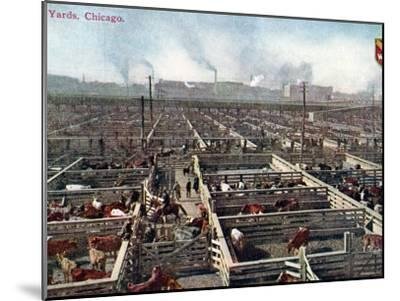 Postcard Depicting the Stock Yards and Abattoirs in Chicago, c.1910--Mounted Photographic Print