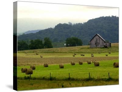 Landscapes Along the Farm Heritage Road-Jon C. Hancock-Stretched Canvas Print