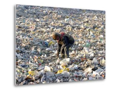 An Impoverished Mongolian Man Sorts Through Garbage at an Ulan Bator Dump--Metal Print