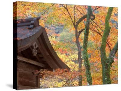 Kibune Shrine, Kyoto, Japan-Rob Tilley-Stretched Canvas Print