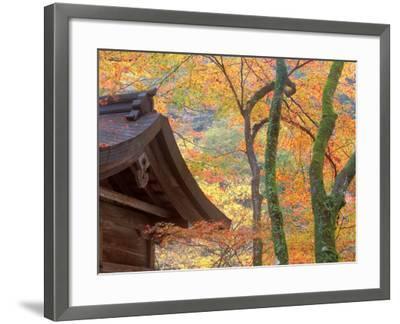 Kibune Shrine, Kyoto, Japan-Rob Tilley-Framed Photographic Print
