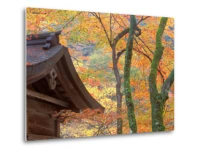 Kibune Shrine, Kyoto, Japan-Rob Tilley-Metal Print