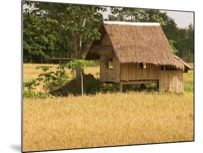 Hut in the Tambon Nong Hin Valley, Thailand-Gavriel Jecan-Mounted Photographic Print
