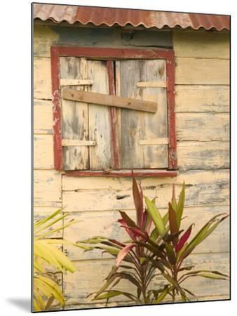 Weathered Cottage of Marie-Galante Island, Guadaloupe, Caribbean-Walter Bibikow-Mounted Photographic Print