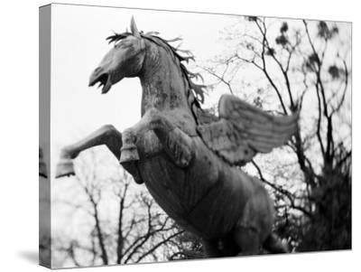 Winged Horse Statue, Mirabellgarten, Salzburg, Austria-Walter Bibikow-Stretched Canvas Print