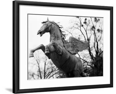 Winged Horse Statue, Mirabellgarten, Salzburg, Austria-Walter Bibikow-Framed Photographic Print