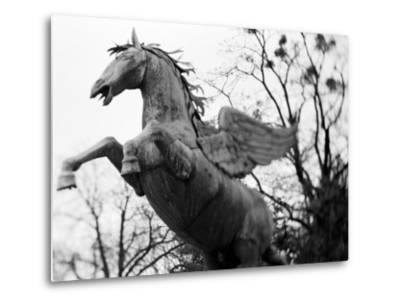 Winged Horse Statue, Mirabellgarten, Salzburg, Austria-Walter Bibikow-Metal Print