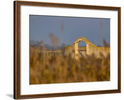 Grasses surrounding Corral Bullring, Camargue, France-Lisa S^ Engelbrecht-Framed Photographic Print