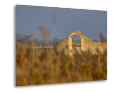 Grasses surrounding Corral Bullring, Camargue, France-Lisa S^ Engelbrecht-Metal Print