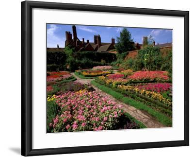 Elizabethan Knot Garden, Shakespeare's Home, Stratford-on-Avon, England-Nik Wheeler-Framed Photographic Print
