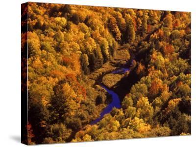Big Carp River, Porcupine State Park, Michigan, USA-Chuck Haney-Stretched Canvas Print