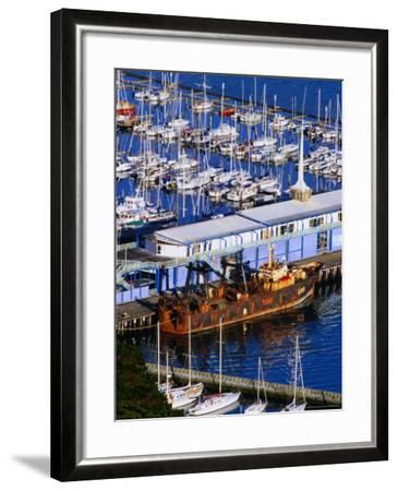 Chaeffers Marina at Oriental Bay, Wellington, Wellington, New Zealand-Paul Kennedy-Framed Photographic Print