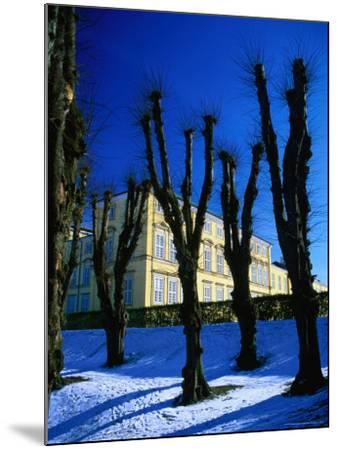 Trees in Winter in Frederiksberg Have, Copenhagen, Denmark-Martin Llad?-Mounted Photographic Print
