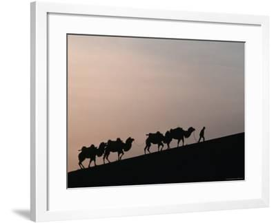 Camel Caravan Silhouetted at Dawn on the Silk Road, Dunhuang, China-Keren Su-Framed Photographic Print