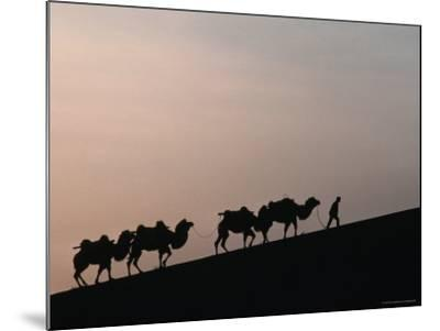 Camel Caravan Silhouetted at Dawn on the Silk Road, Dunhuang, China-Keren Su-Mounted Photographic Print
