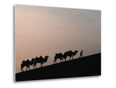 Camel Caravan Silhouetted at Dawn on the Silk Road, Dunhuang, China-Keren Su-Metal Print