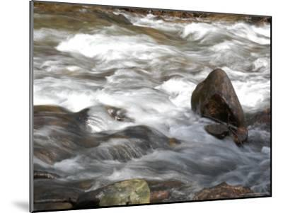 Whitewater Rushes Over Rocks in a River in Montana-Stacy Gold-Mounted Photographic Print