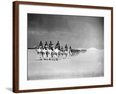 Egyptian Camel Corps--Framed Photographic Print