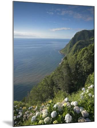 Coastline at Miradouro de Sossego Viewpoint, Sao Miguel Island, Azores, Portugal-Alan Copson-Mounted Photographic Print