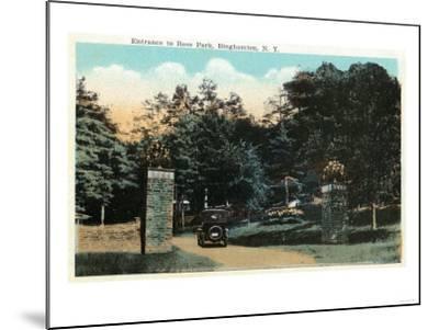 Binghamton, New York - Ross Park Entrance View-Lantern Press-Mounted Art Print