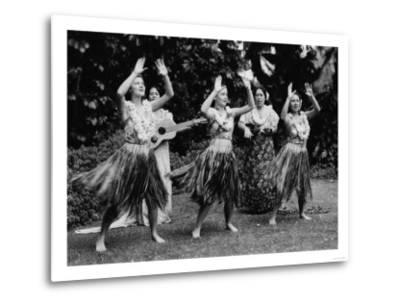 Hawaii - Hula Dancers Photograph-Lantern Press-Metal Print