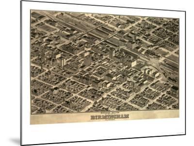 Birmingham, Alabama - Panoramic Map-Lantern Press-Mounted Art Print