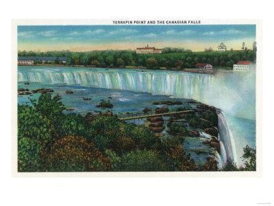 Niagara Falls, Canada - Terrapin Point View of Canadian Falls-Lantern Press-Framed Art Print