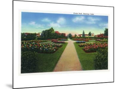 Portland, Maine - Deering Oaks Circle Park View-Lantern Press-Mounted Art Print