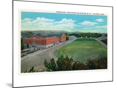 Pullman, Washington - Aerial View of WA State College Gym and Stadium-Lantern Press-Mounted Art Print