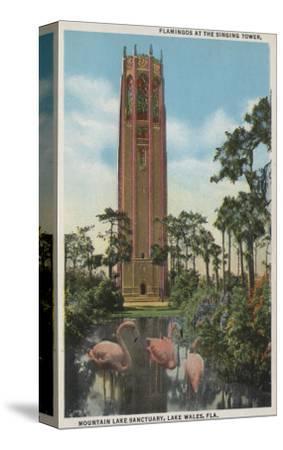 Lake Wales, FL - View of Singing Tower & Flamingos-Lantern Press-Stretched Canvas Print