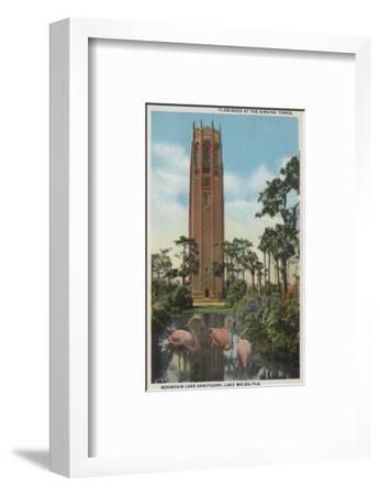 Lake Wales, FL - View of Singing Tower & Flamingos-Lantern Press-Framed Art Print