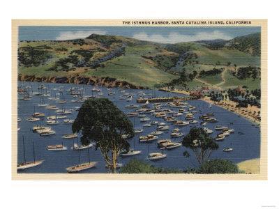 Santa Catalina, California - View of the Isthmus Harbor-Lantern Press-Framed Art Print