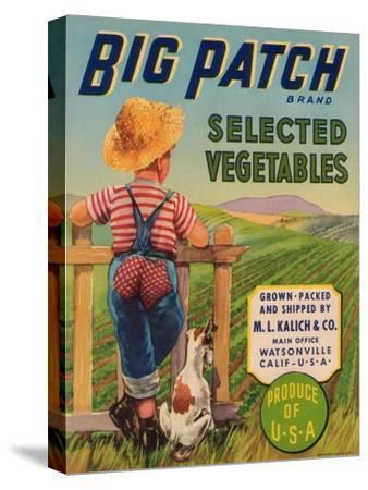 Big Patch Vegetable Label - Watsonville, CA-Lantern Press-Stretched Canvas Print