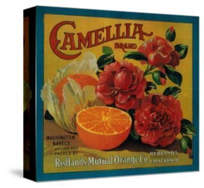 Camellia Orange Label - Redlands, CA-Lantern Press-Stretched Canvas Print