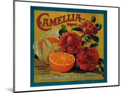 Camellia Orange Label - Redlands, CA-Lantern Press-Mounted Art Print