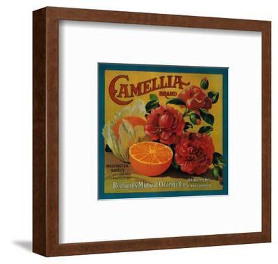 Camellia Orange Label - Redlands, CA-Lantern Press-Framed Art Print