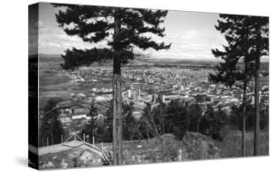 Bellingham, WA Town View from Sehome Hill Photograph No.2 - Bellingham, WA-Lantern Press-Stretched Canvas Print