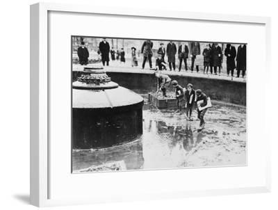 Catching Goldfish in Union Square Fountain Photograph - New York, NY-Lantern Press-Framed Art Print