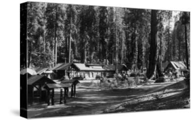 Exterior View of the Giant Forest Lodge - Sequoia National Park, CA-Lantern Press-Stretched Canvas Print