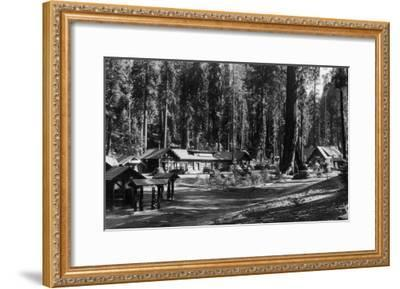 Exterior View of the Giant Forest Lodge - Sequoia National Park, CA-Lantern Press-Framed Art Print