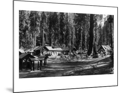 Exterior View of the Giant Forest Lodge - Sequoia National Park, CA-Lantern Press-Mounted Art Print