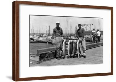 Fishermen with Their Salmon Catch Limit - Westport, WA-Lantern Press-Framed Art Print