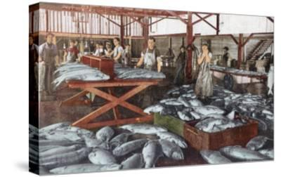 Interior View of a Salmon Cannery - Bellingham, WA-Lantern Press-Stretched Canvas Print