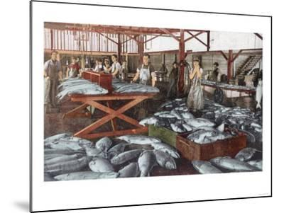 Interior View of a Salmon Cannery - Bellingham, WA-Lantern Press-Mounted Art Print